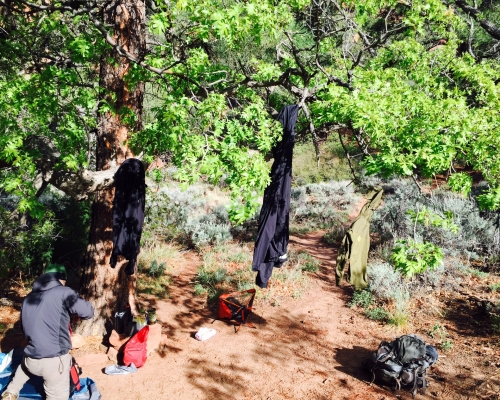 Back country clothesline.